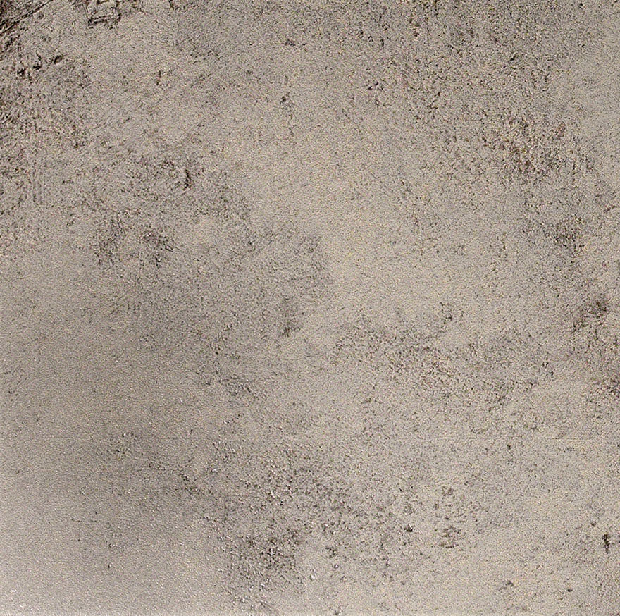 evolution gris 49,1x49,1