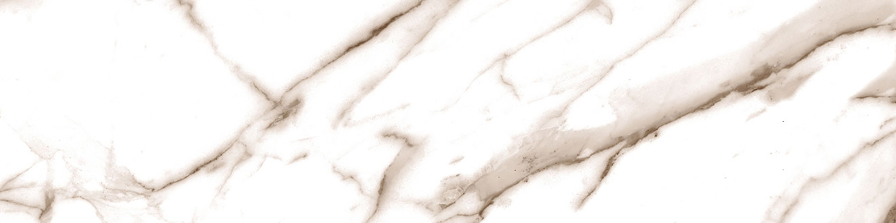 Venezia Bianco Pulido24,5x98,2